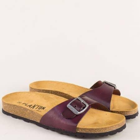Лилави дамски чехли с цяла лента от естествена кожа 101625l
